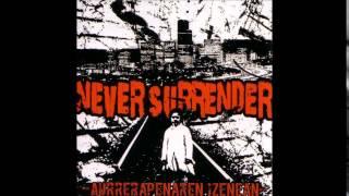 Never Surrender - Borroka