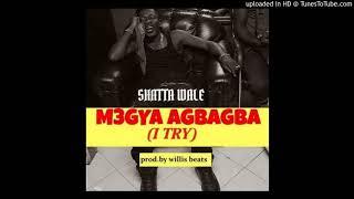 Shatta Wale – M3gya Agbagba [I Try] (Audio Slide)