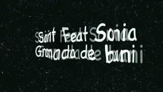 Saint Feat Sonia - Gramada de bani
