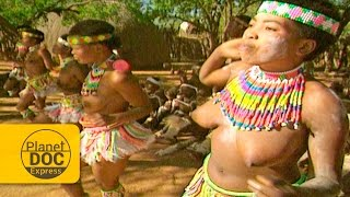 Zulu Women Dances   African Tribe