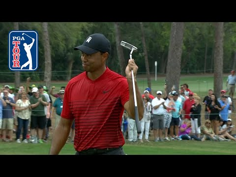 Tiger Woods' monster birdie putt on No. 17 at Valspar