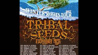 Tribal Seeds - Winter Roots Tour 2017