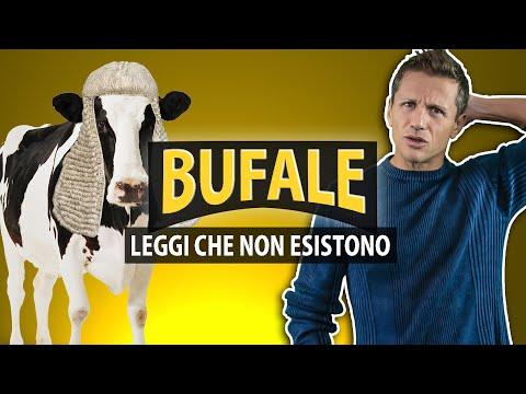 BUFALE: le leggi che non esistono | avv. Angelo Greco