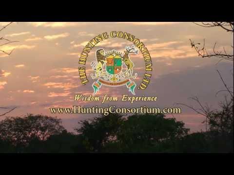 African Safaris (Hunting Consortium)