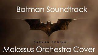 Batman Soundtrack - Molossus Orchestra Cover