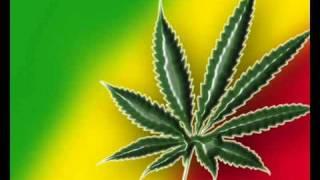 Fumando vamos a casa-Zona Ganjah