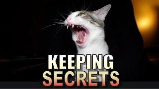 Talking Kitty Cat 53 - Keeping Secrets
