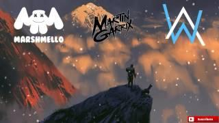 Marshmello, Martin Garrix, Alan Walker Noooo! New Song 2017 ( DaniMusic )