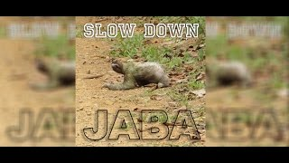 Jaba Slow Down Video (Free Download!)