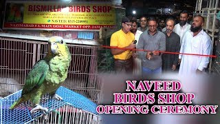 Opening Ceremony of Naveed Birds Shop Video available all species of birds for sale (in Urdu/Hindi)