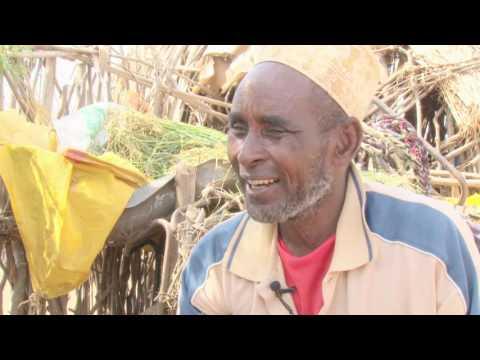 Livelihood Diversification