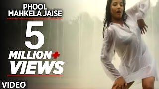 Phool Mahkela Jaise (Full Bhojpuri Hot Video Song)Feat.Hot & Sexy Monalisa width=
