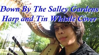 Down By The Salley Gardens  - HARP AND TIN WHISTLE COVER (Le Troubanoob)