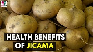7 Health Benefits of Jicama - Health Sutra