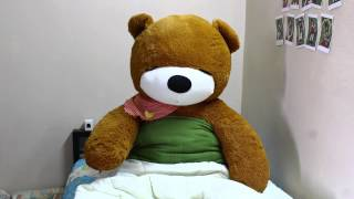 StopMotion - Sleeping Bear