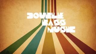 Beyonce & Tiesto vs. Bassjackers & Brooks - Drunk In Alamo (StevenMontana & Olly James Mashup)