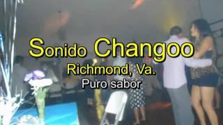 Salsa sonidera-salsa del veterano- sonido Changoo