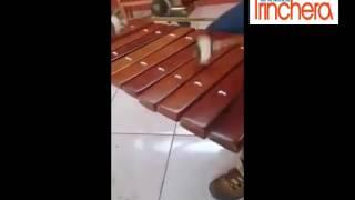 Despacito versión marimba