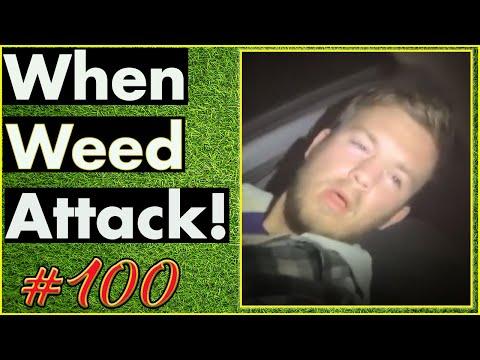 Smoking Weed / Weed Fail Compilation / WEED MEMES AND Weed Pranks! #100