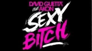 David Guetta feat. Akon-Sexy Bitch [(Remix)]