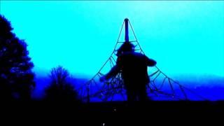 David Shurr - No Surprises