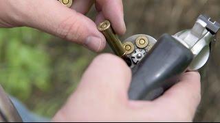 Bear Defense: Tips for Using a Handgun as a Backup