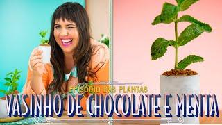 MOUSSE DE MENTA COM BISCOITO DE CHOCOLATE NO VASINHO | RAIZA COSTA