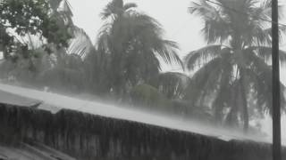 Rain Sounds ! Natural Rain and Sounds HD Video
