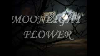 """MOONLIGHT FLOWER"" by MICHAEL CRETU w/ Lyrics"