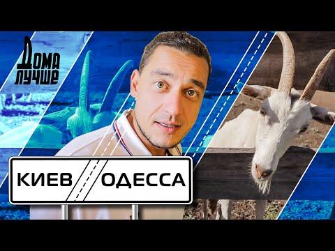Дома лучше! Киев-Одесса: Белая Церковь, Бабины козы, Букский каньон, Умань