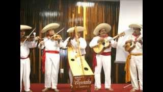 Los Caporales de Santa Ana Amatlan-El Son del Maracumbe.wmv