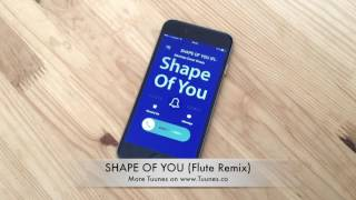 Top SHAPE OF YOU Ringtone 2017 - Ed Sheeran Ringtone Remix Tribute [Download Link]