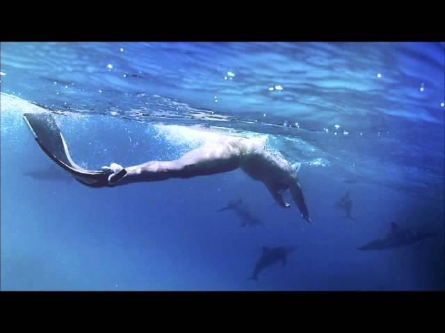"""Videoclip oficial de """"Seahorses"""" de Exsonvaldes."""