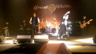 Great white - once bitten twice shy ( featuring mini Paul)