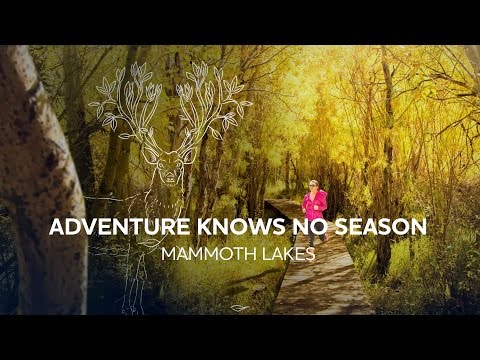 Mammoth Lakes | Adventure Knows No Season
