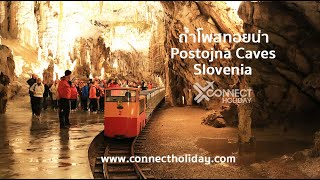 ถ้ำโพสทอยน่า ประเทศสโลวีเนีย Postojna Cave