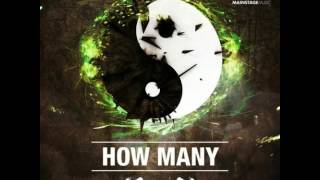 W&W - How Many ( origina mix )