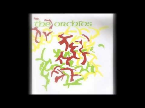 the-orchids-peaches-indiepop88