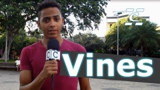 Você sabe o que é Vine?