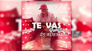 TEMAZO 2017 - TE VAS - VERSION FLAMENCO - MONCHO CHAVEA - DJ ADEMARO