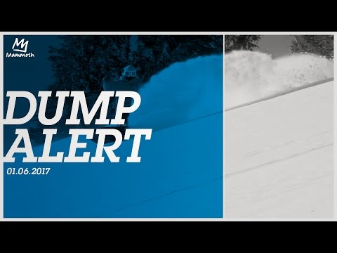 Dump Alert    01.06.2017