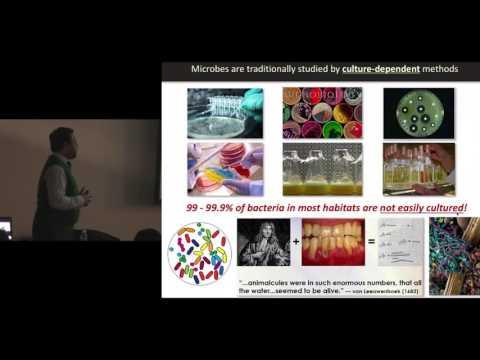 Fighting Antibiotic-Resistant Superbugs Across Diverse Habitats