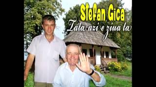 STEFAN GICA - TATA AZI E ZIUA TA