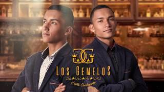 Vete - Duban Bayona feat Los gemelos del Despecho (Musica Popular) Video Lyrics oficial