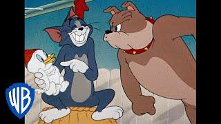 Том и Джерри | Подборка классических мультфильмов | Том, Джерри и Спайк | WB Kids