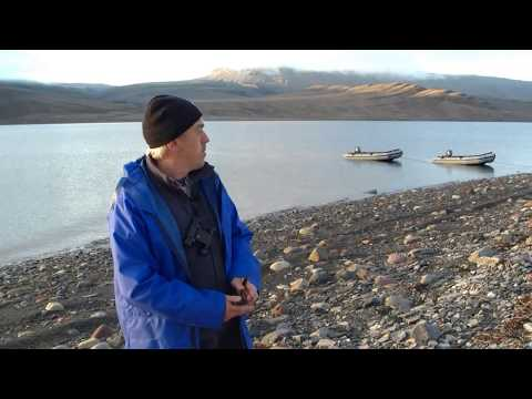 Tagging Narwhal in the Arctic
