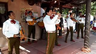My Friends with Mariachi Cobre LIVE at EPCOT - 35 Years and Still Going Strong