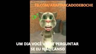 O gatinho cantando Luan Santana em outra versão