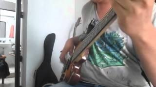 Molotov-Parasito-Bass Cover