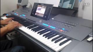 電子琴 演奏 《甜蜜蜜》